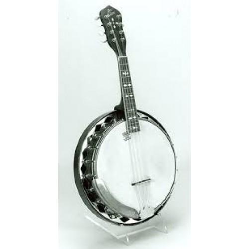 Mandolin & Banjo