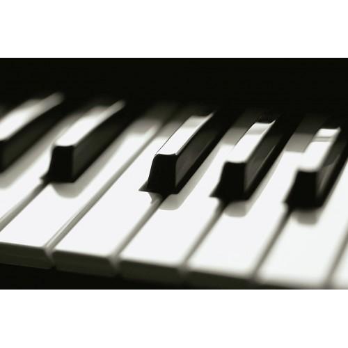 Klavyeli Enstrümanlar