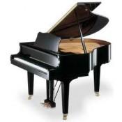 Kuyruklu Royal Piyanolar (0)