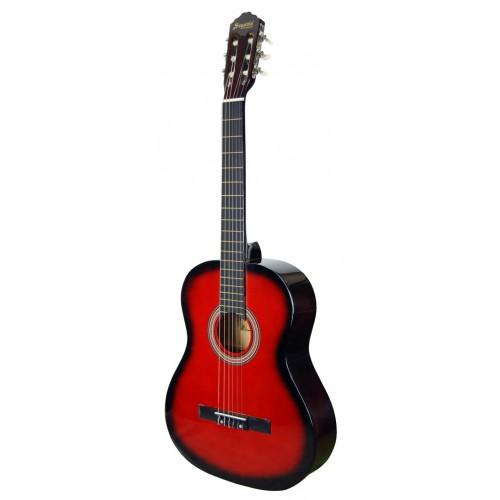 Klasik Gitar Segovia SGC1001RB